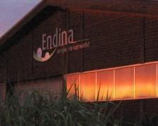 endina_halle